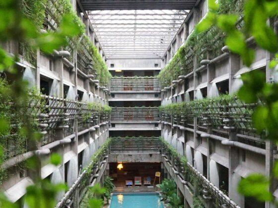 Végétalisation intérieur